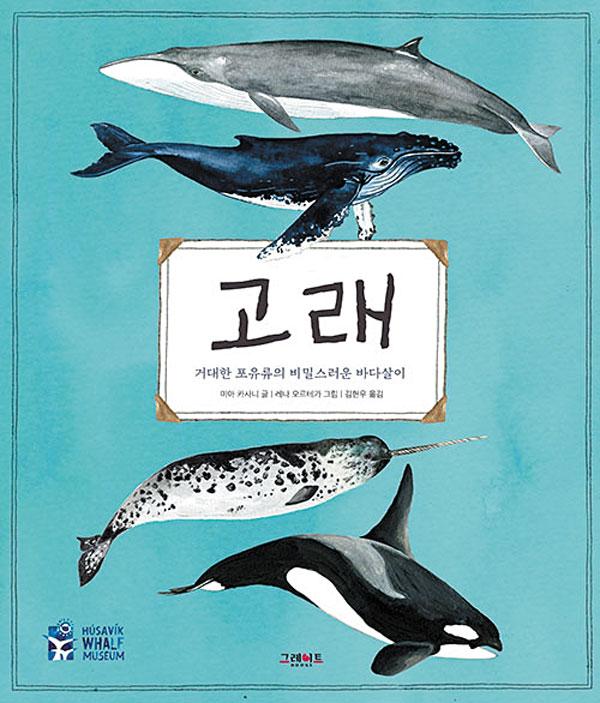 [재밌다, 이 책!] 대왕고래는 입안에 물 90톤 머금고 혹등고래는 '물방울 그물'로 사냥해요